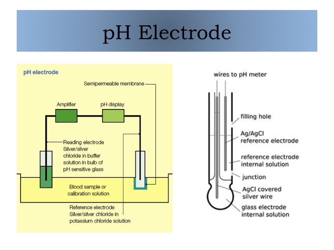 pH Electrode slide image
